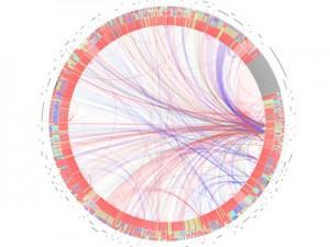 Круговая мульти-параметрическая диаграмма
