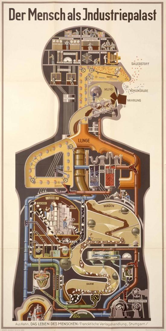 Хеннинг Ледедер - Der Mensch als Industrienpalast - Человек как индустриальный завод