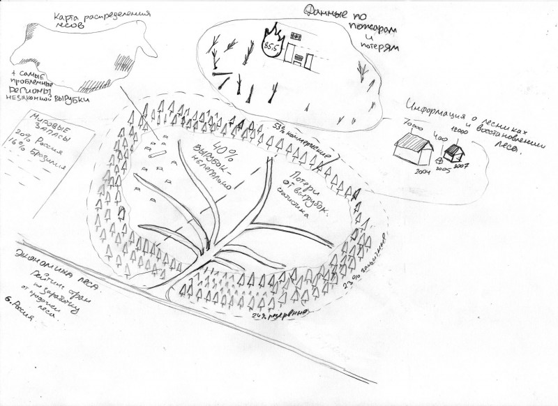 инфографика для журнала ГЕО. Лесные ресурсы России