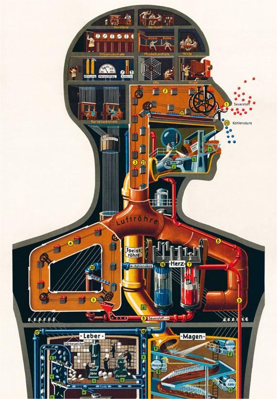 Человек как индустриальный дворец