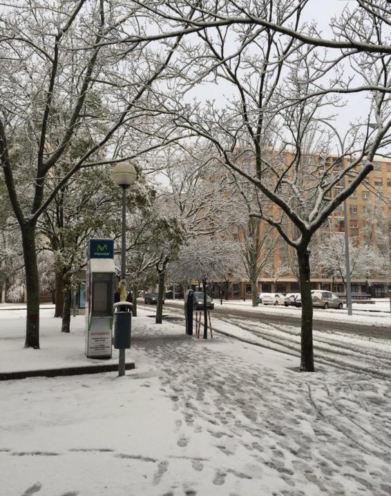 malofiej-snow